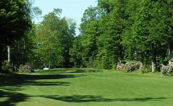 Photo du Golf de la Freslonnière