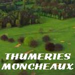 Golf de Thumeries-Moncheaux